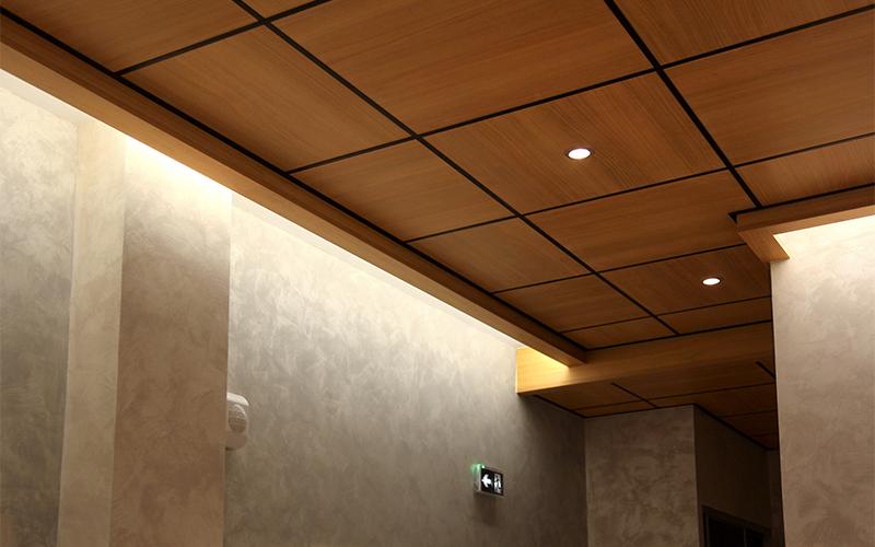 faivre-pierret-plafond2